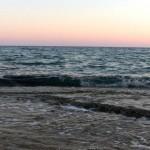 seaofseas Cprus limasol orly aviv